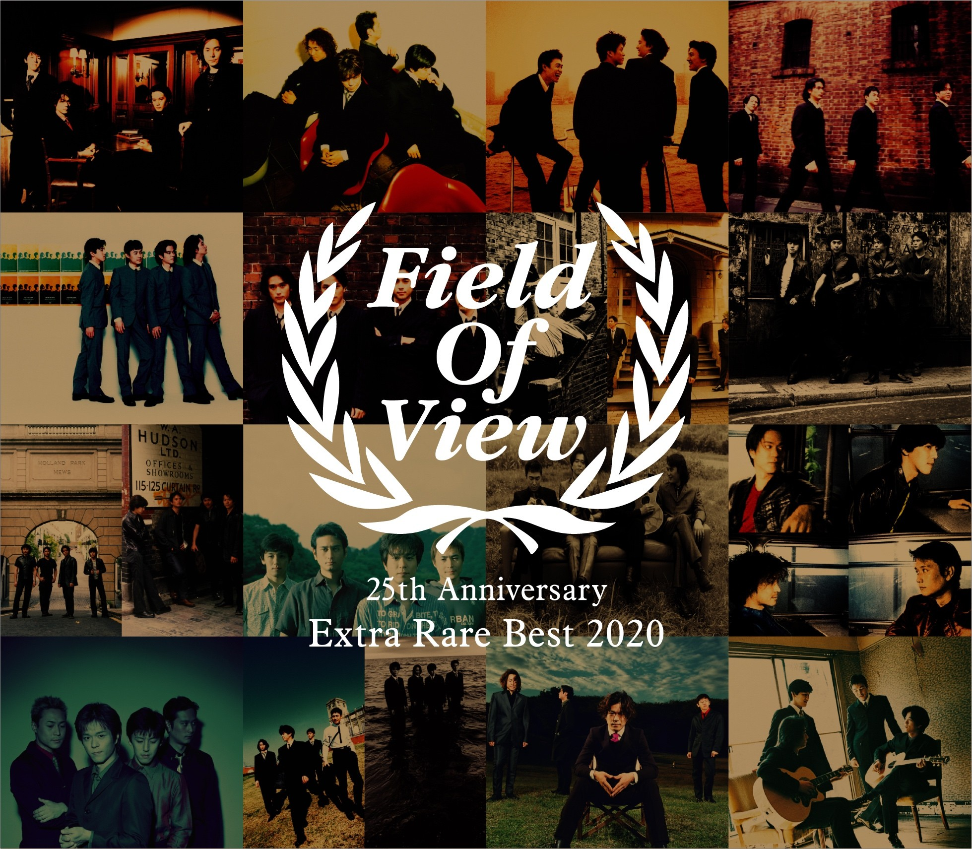 Download Album FIELD OF VIEW FIELD OF VIEW 25th Anniversary Extra Rare Best 2020