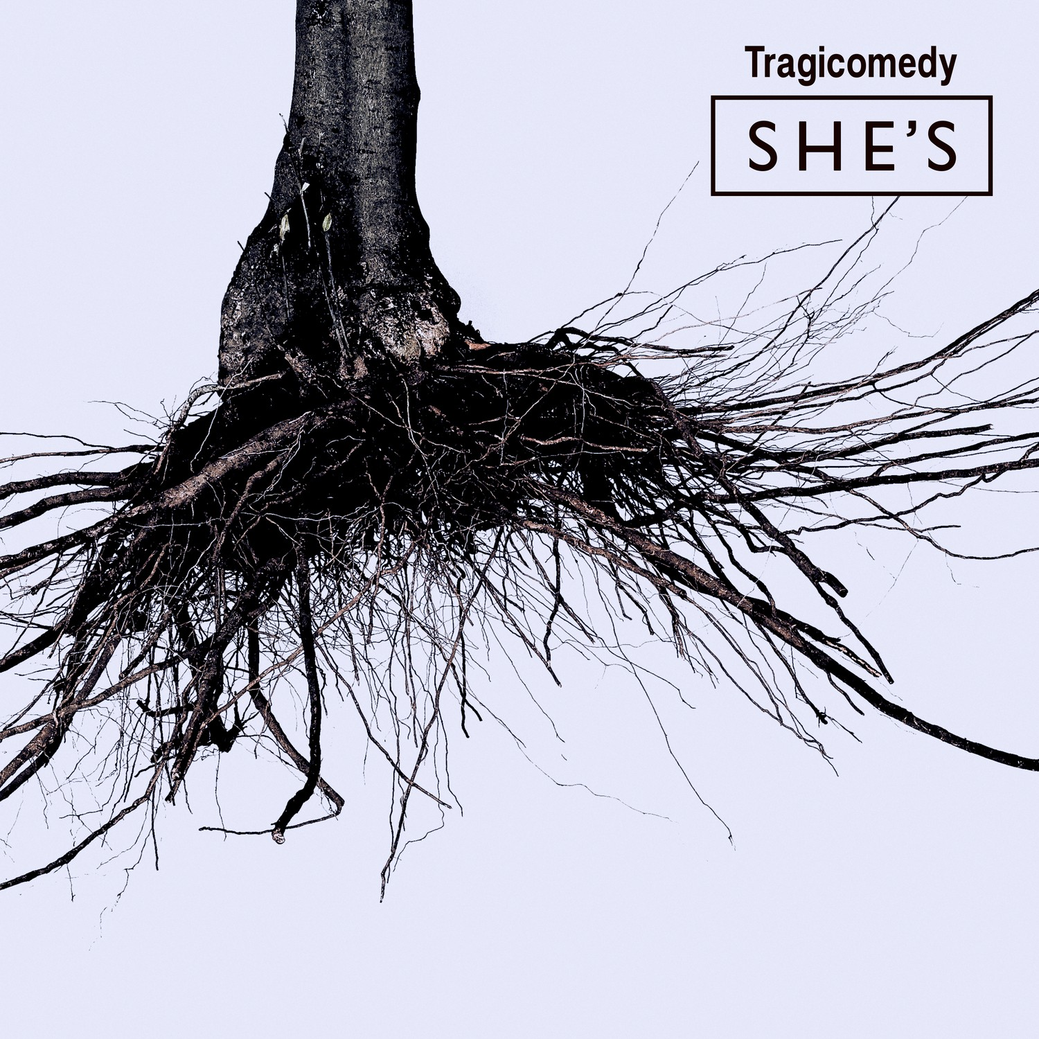 Download SHE'S Tragicomedy Album