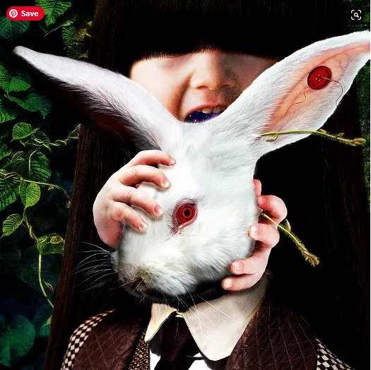 Migma Shelter Alice Album Download Flac Mp3 zip rar