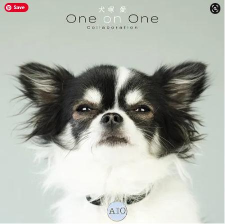 Ai Otsuka Inutsuka Ai One on One Collaboration album download Flac Mp3 aac zip rar