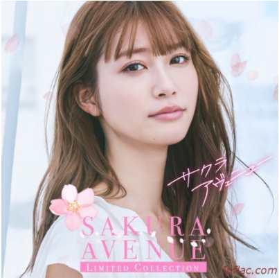 Download Album V.A. – SAKURA AVENUE ≪Limited Collection≫ V.A. – サクラ・アヴェニュー ≪Limited Collection≫ Flac Aac zip rar