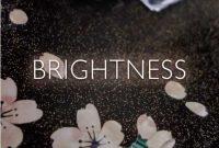 SAKI BRIGHTNESS single download Mp3 Flac aac zip rar